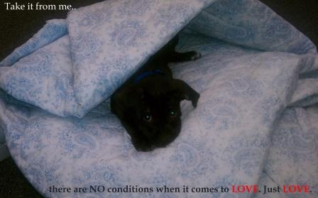 No Conditions to LOVE