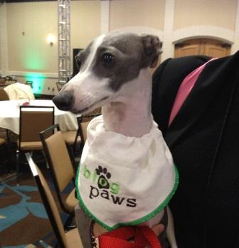 Duff BlogPaws 2012