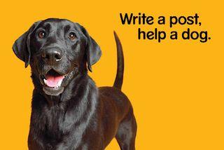 PEDIGREE Write A Post Help A Dog