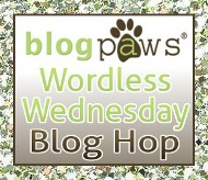 BlogPaws WW Blog Hop
