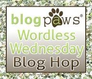 BlogPaws WW Blog Hop